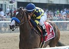 "Contested won the Acorn Stakes at Belmont Park in May.<br><a target=""blank"" href=""http://photos.bloodhorse.com/AtTheRaces-1/at-the-races-2012/22274956_jFd5jM#!i=1873092812&k=PcdHGZZ"">Order This Photo</a>"