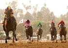 "Premier Pegasus leaves the rest behind in the San Felipe.<br><a target=""blank"" href=""http://www.bloodhorse.com/horse-racing/photo-store?ref=http%3A%2F%2Fpictopia.com%2Fperl%2Fgal%3Fprovider_id%3D368%26ptp_photo_id%3D9445586%26ref%3Dstory"">Order This Photo</a>"