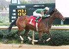 Don't Tell Sophia rolls home in the Bayakoa Stakes at Oaklawn.