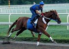 Curlin, shown working at Saratoga earlier this month, drew post 5 in the Woodward (gr. I).