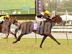 Wishing Gate wins the 2013 Autumn Miss.