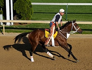 Friesan Fire under Larry Jones at Churchill Downs, April 25, 2009.