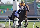 "2010 Blue Grass Stakes winner Stately Victor faces a full field in the Prairie Bayou.<br><a target=""blank"" href=""http://www.bloodhorse.com/horse-racing/photo-store?ref=http%3A%2F%2Fpictopia.com%2Fperl%2Fgal%3Fprovider_id%3D368%26ptp_photo_id%3D8886091%26ref%3Dstory"">Order This Photo</a>"