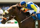"Tiz West takes the Cinema by a nose over Ez Dreamer.<br><a target=""blank"" href=""http://www.bloodhorse.com/horse-racing/photo-store?ref=http%3A%2F%2Fpictopia.com%2Fperl%2Fgal%3Fprovider_id%3D368%26ptp_photo_id%3D4911947%26ref%3Dstory"">Order This Photo</a>"