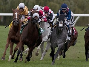 Wise Dan, far left, running in the Woodbine Mile.