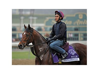 Excelebration