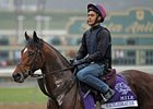 O'Brien's Starters Lead Euro Exercise Nov. 1