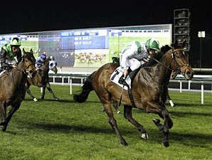 Nocturnal Affair wins the 2012 Al Naboodah Construction Group.
