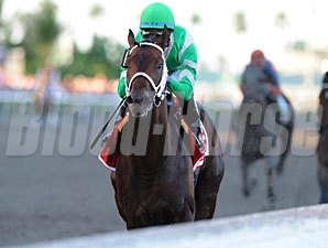 Soldat wins the 2011 Fountain of Youth.