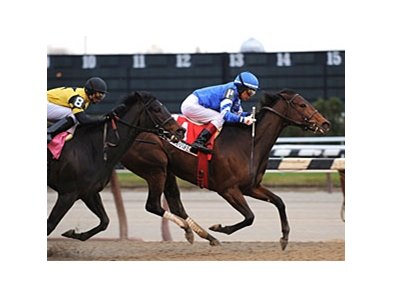 "Sara Louise holds off Justwhistledixie to win the Top Flight.<br><a target=""blank"" href=""http://www.bloodhorse.com/horse-racing/photo-store?ref=http%3A%2F%2Fpictopia.com%2Fperl%2Fgal%3Fprovider_id%3D368%26ptp_photo_id%3D8657574%26ref%3Dstory"">Order This Photo</a>"