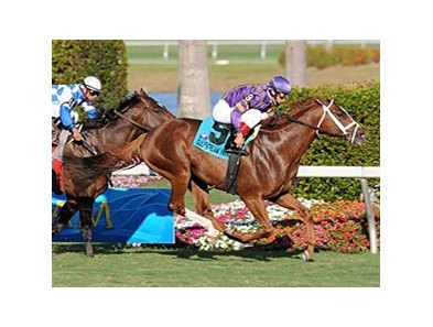 Twilight Meteor won the Canadian Turf in 2009.