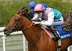 "Midday repeats in the Blue Square Nassau Stakes under Tom Queally.<br><a target=""blank"" href=""http://www.bloodhorse.com/horse-racing/photo-store?ref=http%3A%2F%2Fpictopia.com%2Fperl%2Fgal%3Fprovider_id%3D368%26ptp_photo_id%3D9128006%26ref%3Dstory"">Order This Photo</a>"