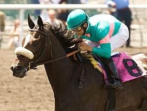 Zenyatta 'Definitely' Leaning Toward Classic