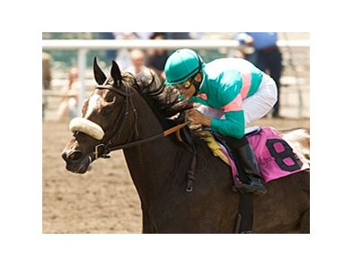 "NYRA is hoping to lure Zenyatta to Belmont Park to face Rachel Alexandra.<br><a target=""blank"" href=""http://www.bloodhorse.com/horse-racing/photo-store?ref=http%3A%2F%2Fpictopia.com%2Fperl%2Fgal%3Fprovider_id%3D368%26ptp_photo_id%3D8279340%26ref%3Dstory"">Order This Photo</a>"