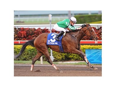 "Capt. Candyman Can is the leading money earner entered in the Bay Shore Stakes.<br><a target=""blank"" href=""http://www.bloodhorse.com/horse-racing/photo-store?ref=http%3A%2F%2Fpictopia.com%2Fperl%2Fgal%3Fprovider_id%3D368%26ptp_photo_id%3D7601154%26ref%3Dstory"">Order This Photo</a>"