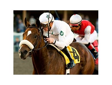 "American Lion<br><a target=""blank"" href=""http://www.bloodhorse.com/horse-racing/photo-store?ref=http%3A%2F%2Fpictopia.com%2Fperl%2Fgal%3Fprovider_id%3D368%26ptp_photo_id%3D8647101%26ref%3Dstory"">Order This Photo</a>"