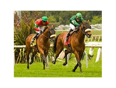 "Obrigado shows the way in the Round Table.<br><a target=""blank"" href=""http://www.bloodhorse.com/horse-racing/photo-store?ref=http%3A%2F%2Fpictopia.com%2Fperl%2Fgal%3Fprovider_id%3D368%26ptp_photo_id%3D8233946%26ref%3Dstory"">Order This Photo</a>"