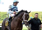 "Daredevil<br><a target=""blank"" href=""http://photos.bloodhorse.com/AtTheRaces-1/At-the-Races-2014/i-v3bVPRC"">Order This Photo</a>"