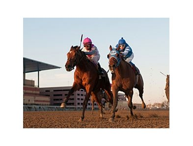 "Vyjack (left) fights off Siete de Oros to win the Jerome Stakes.<br><a target=""blank"" href=""http://photos.bloodhorse.com/AtTheRaces-1/at-the-races-2013/27257665_QgCqdh#!i=2306124658&k=j6T66Sv"">Order This Photo</a>"
