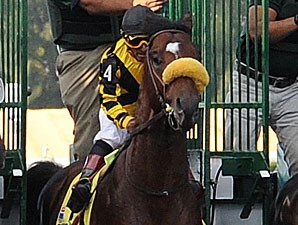 Tomcito at the start of the Florida Derby (gr. I).