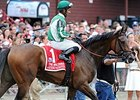 "Artemis Agrotera<br><a target=""blank"" href=""http://photos.bloodhorse.com/AtTheRaces-1/At-the-Races-2014/i-LLrx7WL"">Order This Photo</a>"