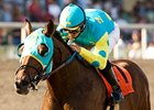 Baffert Still Undecided About Jaycito