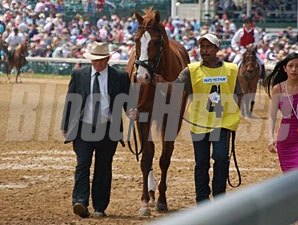Shackleford in the Churchill Downs Stakes walk over.