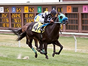 Tribal Tribute wins the 2012 Robert Dupret Derby.