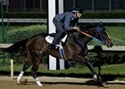 Three Oaks Contenders Turn in Solid Drills
