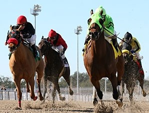 Early Return wins the 2011 F. W. Gaudin Memorial Stakes.