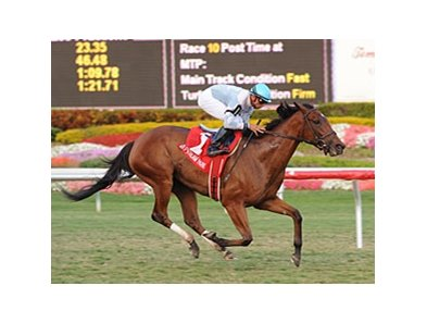 "I Lost My Choo draws off to a win in the Honey Fox.<br><a target=""blank"" href=""http://www.bloodhorse.com/horse-racing/photo-store?ref=http%3A%2F%2Fpictopia.com%2Fperl%2Fgal%3Fprovider_id%3D368%26ptp_photo_id%3D7864657%26ref%3Dstory"">Order This Photo</a>"