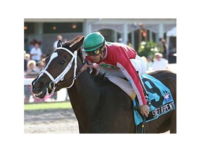 Sweet Repent makes her 4-year-old debut in the Sunshine Millions Distaff.