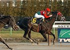 "Gravesend winner City Attraction takes on Lord Snowdon in the Paumonok.<br><a target=""blank"" href=""http://www.bloodhorse.com/horse-racing/photo-store?ref=http%3A%2F%2Fpictopia.com%2Fperl%2Fgal%3Fprovider_id%3D368%26ptp_photo_id%3D3156575%26ref%3Dstory"">Order This Photo</a>"