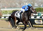 "Wedding Toast tries for her sixth victory Feb. 21 in the Rampart.<br><a target=""blank"" href=""http://photos.bloodhorse.com/AtTheRaces-1/at-the-races-2013/27257665_QgCqdh#!i=2940058208&k=8X8Cj5z"">Order This Photo</a>"