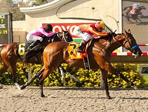 Executiveprivilege wins the 2012 Sorrento.