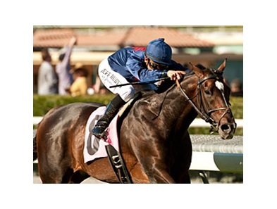 Mr. Commons will attempt to snap an eight-race losing streak in the Jaipur Stakes.