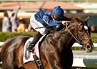 Mr. Commons and Mike Smith take the Arcadia at Santa Anita.