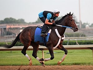 Rachel Alexandra gallops at Churchill Downs, May 23, 2009.
