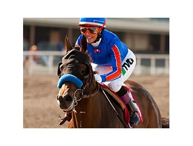 Chantal Sutherland and Game On Dude