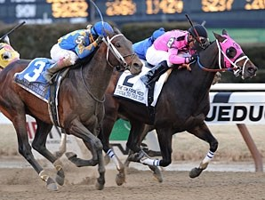 Comma to the Top wins the 2013 Tom Fool Handicap.