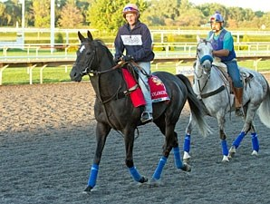 Colombian - Arlington Park, August 17, 2012.