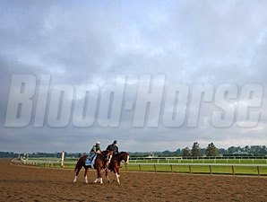 Will Take Charge - Belmont Park, June 6, 2013.