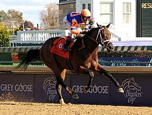 Uncle Mo Runs Off With 2YO Male Honors