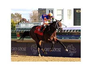 "Uncle Mo will break from the rail in the Timely Writer Stakes.<br><a target=""blank"" href=""http://www.bloodhorse.com/horse-racing/photo-store?ref=http%3A%2F%2Fpictopia.com%2Fperl%2Fgal%3Fprovider_id%3D368%26ptp_photo_id%3D9272819%26ref%3Dstory"">Order This Photo</a>"