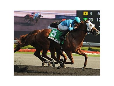 Alpha Bettor gets by City Wolf to win the Seagram Cup at Woodbine.