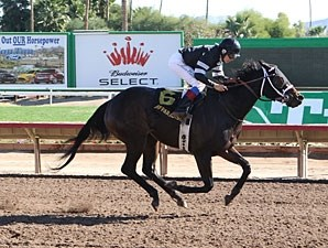 Page Springs wins the 2012 Cactus Flower Stakes.