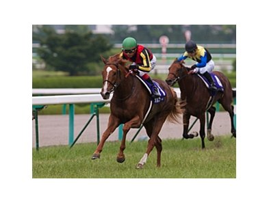 Orfevre winning the Takarazuka Kinen.