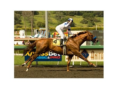 "Santa Anita Derby winner Sidney's Candy hasn't run since finishing 17th in the Kentucky Derby.<br><a target=""blank"" href=""http://www.bloodhorse.com/horse-racing/photo-store?ref=http%3A%2F%2Fpictopia.com%2Fperl%2Fgal%3Fprovider_id%3D368%26ptp_photo_id%3D8874682%26ref%3Dstory"">Order This Photo</a>"