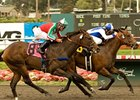 "J P's Gusto captured claimed his first graded stakes win in the Hollywood Juvenile Championship Stakes. <br><a target=""blank"" href=""http://www.bloodhorse.com/horse-racing/photo-store?ref=http%3A%2F%2Fpictopia.com%2Fperl%2Fgal%3Fprovider_id%3D368%26ptp_photo_id%3D9097250%26ref%3Dstory"">Order This Photo</a>"
