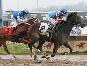 Officer Alex wins the 2012 Pennsylvania Nursery Stakes.